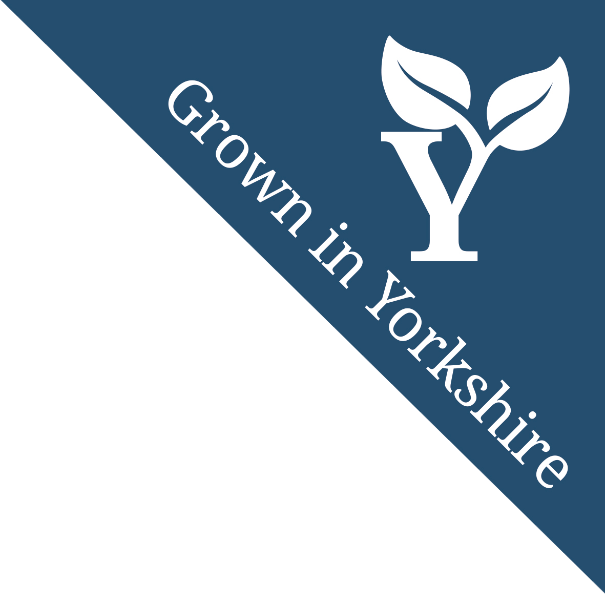 Grown in Yorkshire