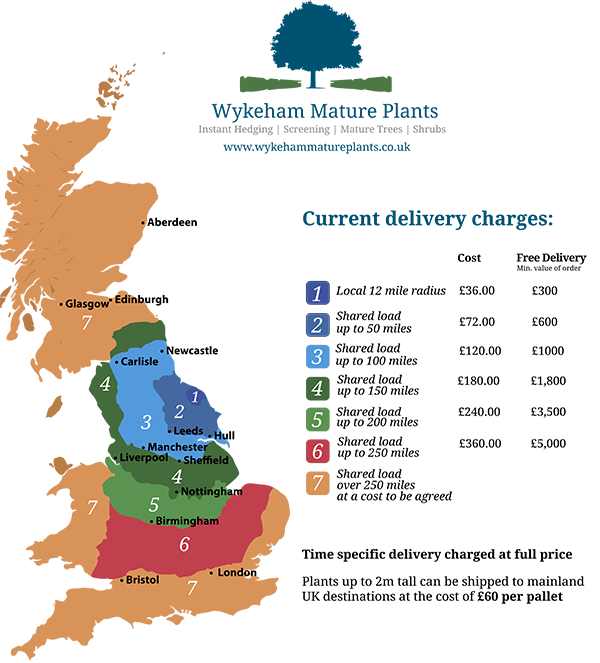 picture_of_delivery_map