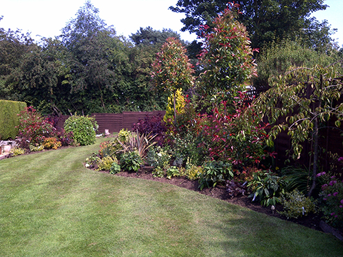 picture_of_garden_transformed_by_wykeham_mature_plants