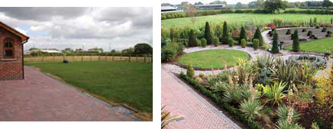 retail_project_before_and_after_planting_service_from_wykeham_mature_plants